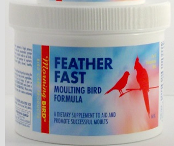 Morning Bird Feather Fast Powdered Supplement