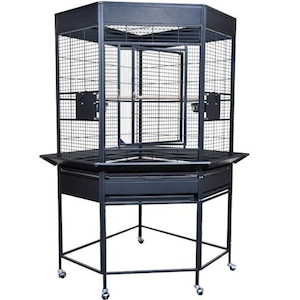 KC Kings Cage SLCC 3216 Economy Line