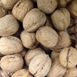 NM WALNUTS in the shell 2 pounds